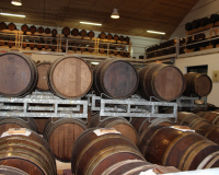 Balsamico Producent